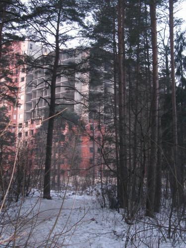 дом_в_лесу2.jpg