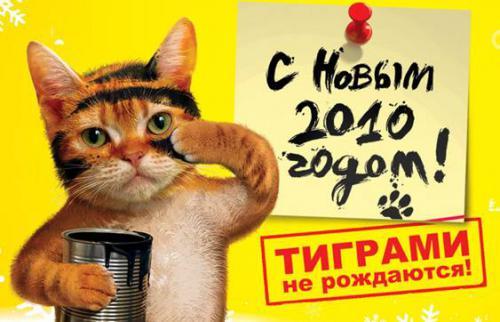 post_1262271280.jpg