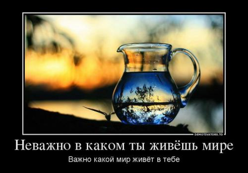 foto8o3_35.jpg