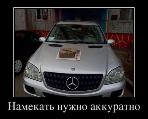 s3img_54937267_1030_1.jpg