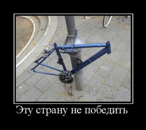 1319095999_01b.jpg