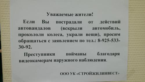 IMAG1338.jpg