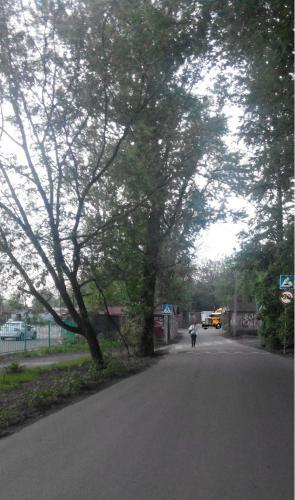Кошмары улицы Вязов.jpg