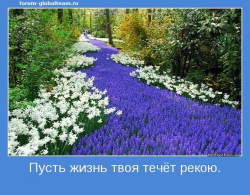 motivator-28605.jpg