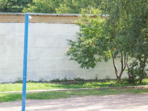 Двор школы м 4.jpg