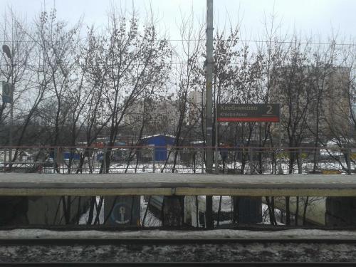 20110104_202607.jpg