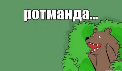 ротман.png