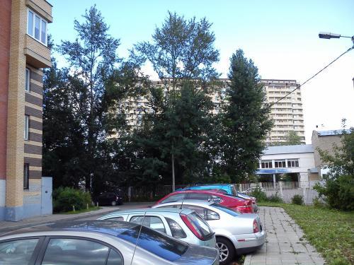 DSC_00311.jpg